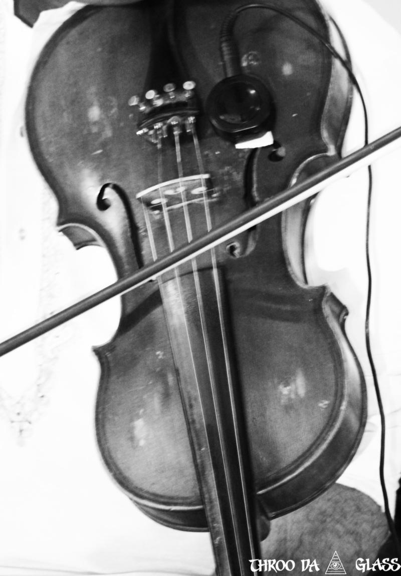 V,violin,music,instrument,wednesday,abc,wordless,praveen,karnataka,bangalore,throo da looking glass
