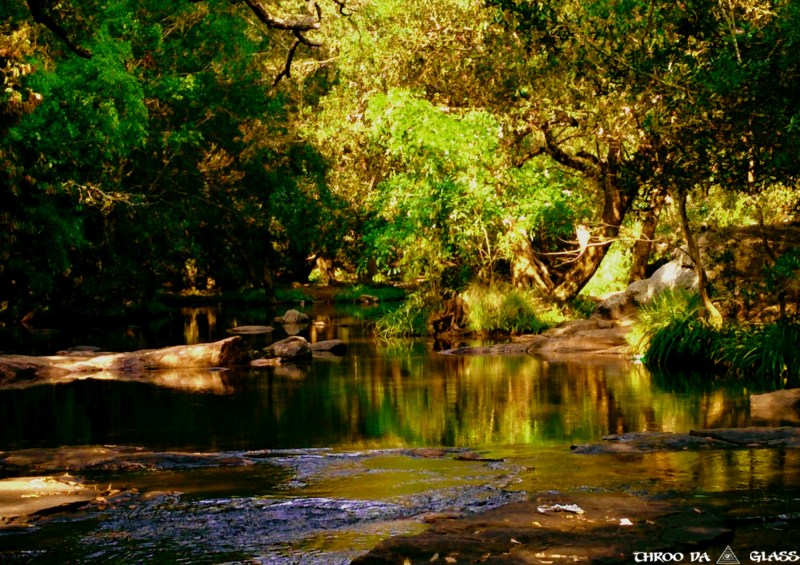 Magical Place in Nisargadhama, Coorg
